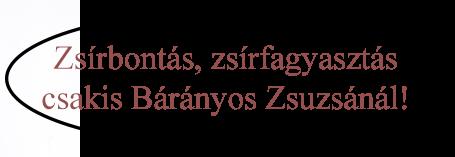 fooldal-zsirbontas-zsirfagyasztas.hu-2
