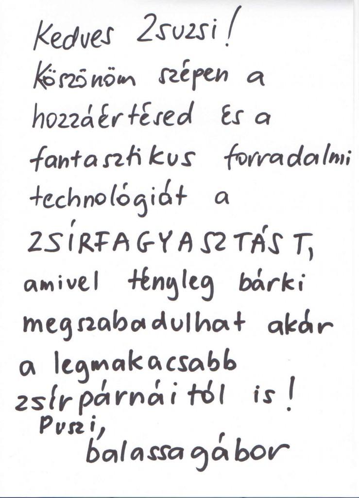 Ajánlás Balassa Gábor